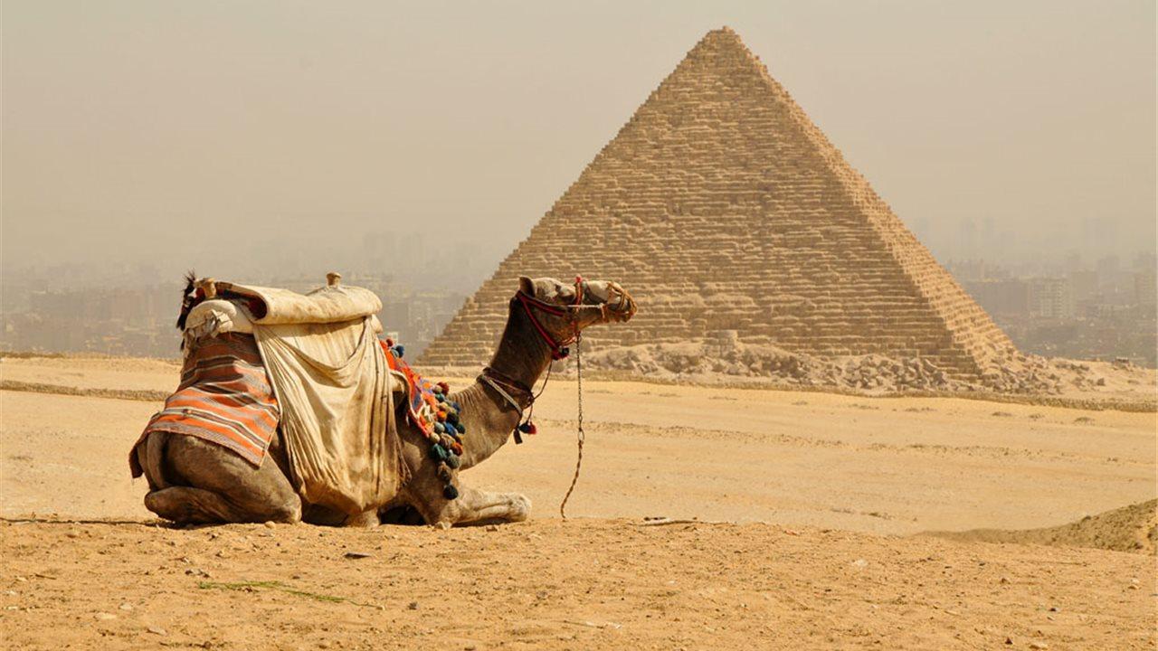 Egipto. Portal de Activación 333